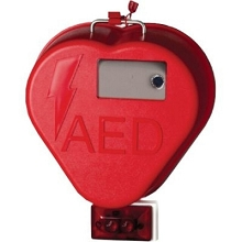 HeartCase Outdoor Cabinet with Alarm and Strobe by HeartStation